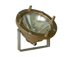 Projecteur 300 W ampoule PAR 56