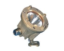 Projecteur compact 50 ou 100 W